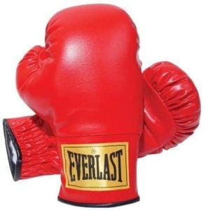 2964 Traditional Boxing Gloves-14-Ounce