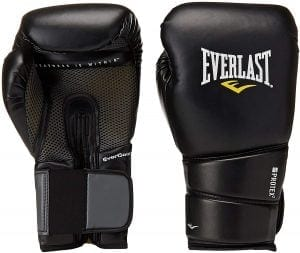 ProTex2 Training Everlast Boxing Gloves